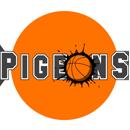 CBD Pidgeons RBL 2016 s2 challenge OLD